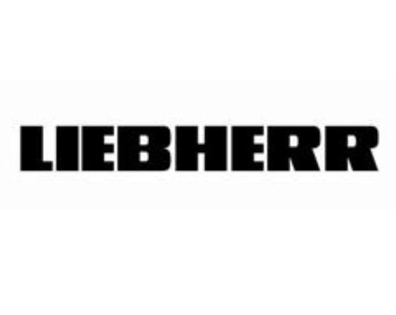 Servicio Técnico Liebherr en Alfafar